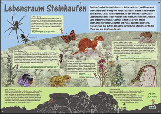 NaBiT Lebensraum-Tafel Steinhaufen