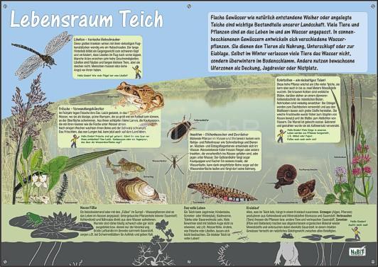 NaBiT Lebensraum-Tafel Teich