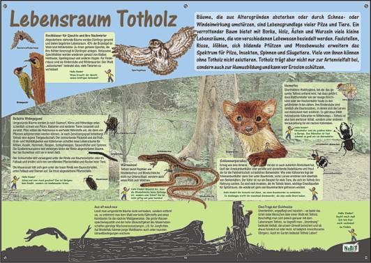 NaBiT Lebensraum-Tafel Totholz