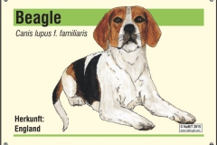 nabit_namenschild_beagle