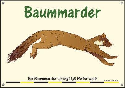 nabit_hinweisschild_weitsprung_baummarder
