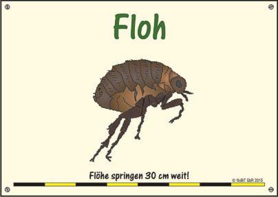 nabit_hinweisschild_weitsprung_floh