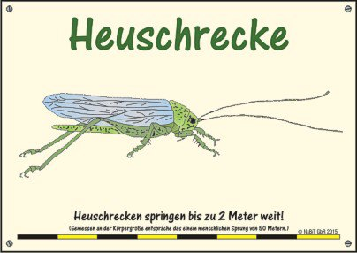 nabit_hinweisschild_weitsprung_heuschrecke