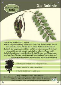 NaBiT-Baum des Jahres-Tafel 2020